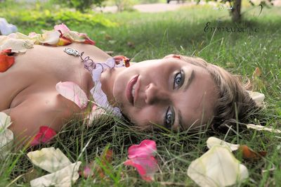 Silvia colllier rose